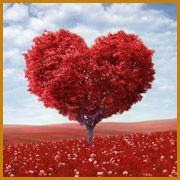 Amore e vita di coppia